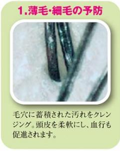 環境保全研究所 頭皮洗浄 効果