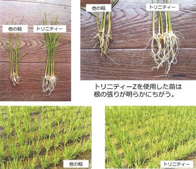 環境保全研究所 収穫量アップ 農業 使用方法